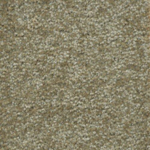 300 SP-52Y46 Specials Carpet