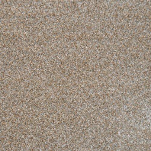 1281 SP-42 Specials Carpet