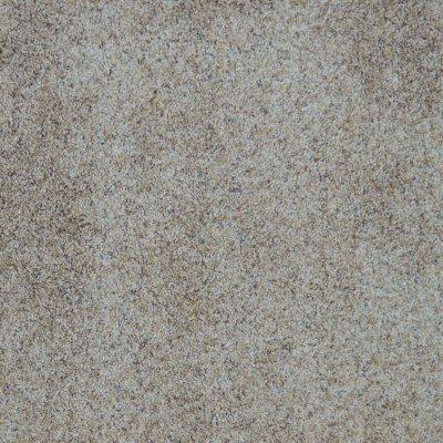 295 SP-DELICATE Wholesale Carpet